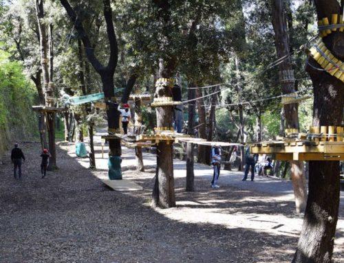 Continua il divertimento al Parco Avventura!