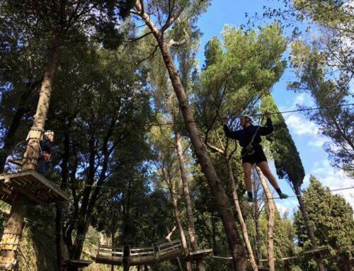 Sabato 23 maggio: riapertura, su prenotazione, del Parco Avventura!